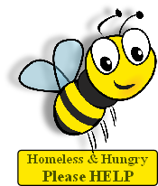 Homeless and Hungry Bee