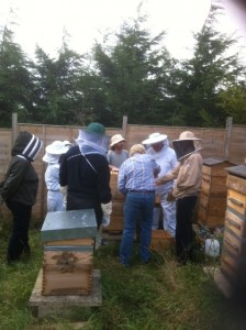 Oxfordshire Natural beekeepers meeting