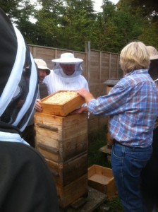 Oxfordshire Natural beekeepers meeting at Shilton apiary